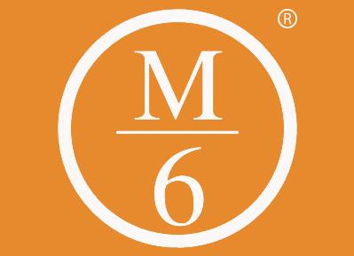 M 6商标转让